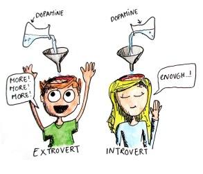 Introvert_9sensitivitytodopamine_zps33d33aa2 (1)