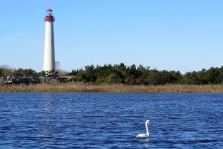 lighthouse-669209_1920