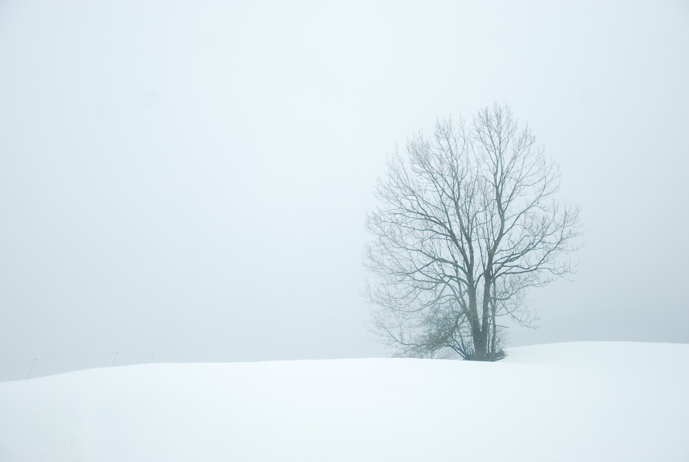 winter-872174_1920